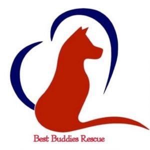 Best Buddies Rescue
